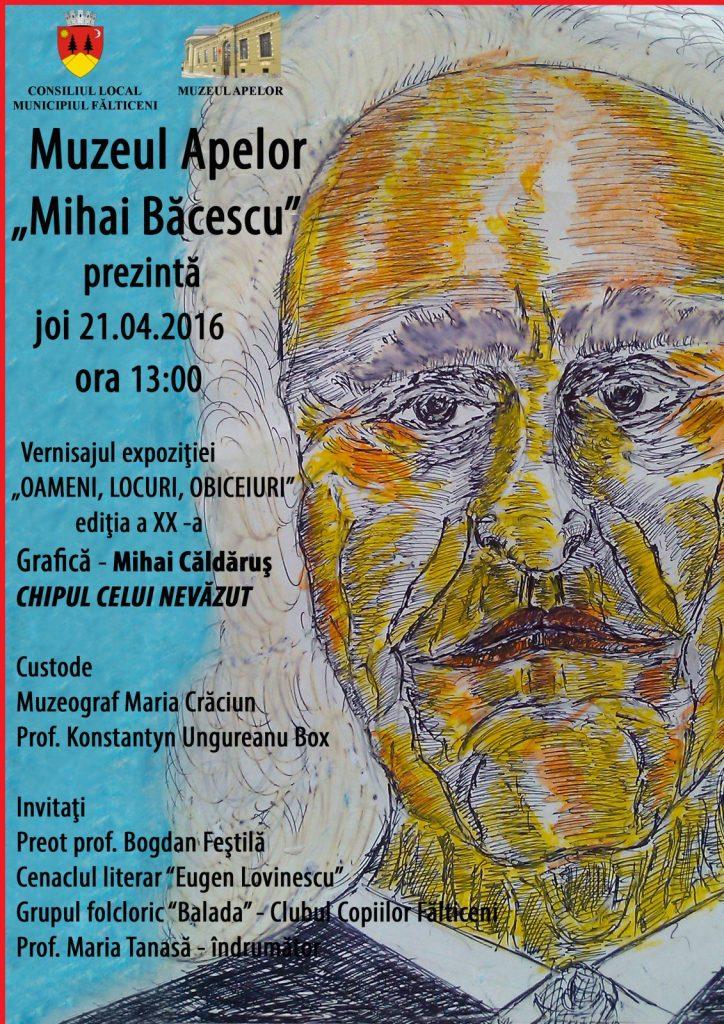 Falticeni -postergrafica (1)