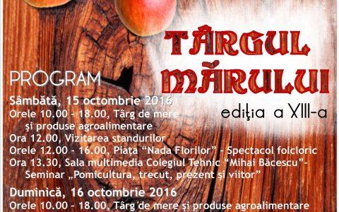 falticeni-afis-targul-marulssssui-2016